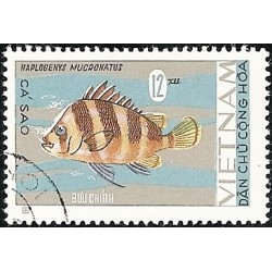 485.- ryby,o,