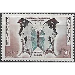 447.- motýl,**,