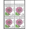 550.,čtbl, Krása květů- Gerbera,**,