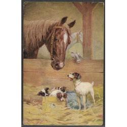 kůň, psi, H.K.W.I.495-5 ,o,